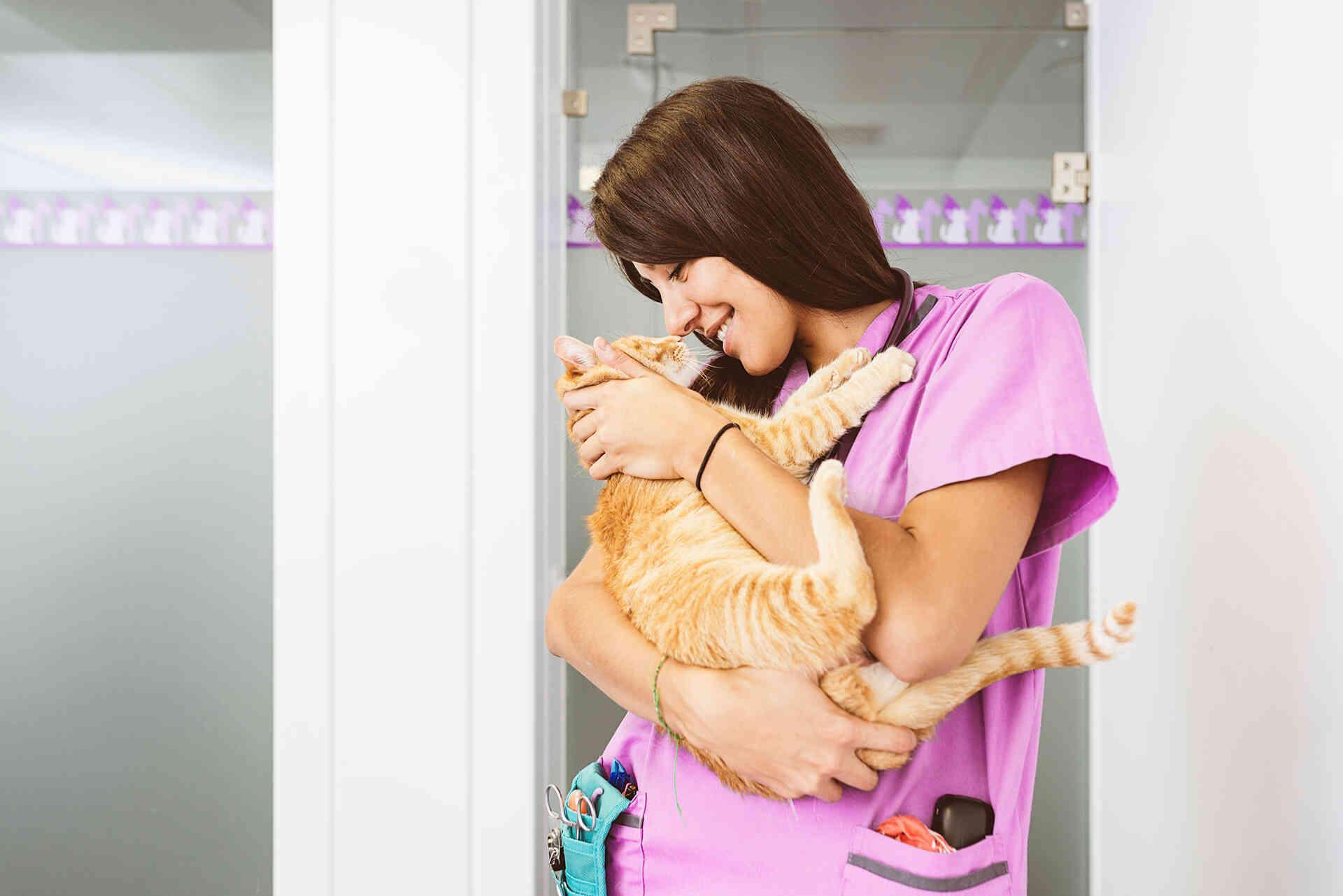 Ветеринарная клиника Haabersti