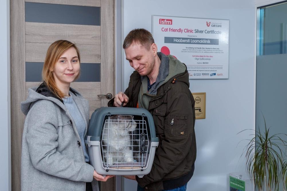 Путешествие вашей кошки в клинику - Ветеринарная клиника Haabersti
